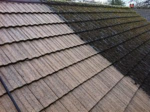 roof cleaning moss removal london surrey