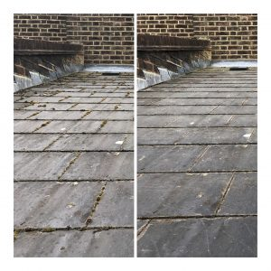 roof cleaning peckham