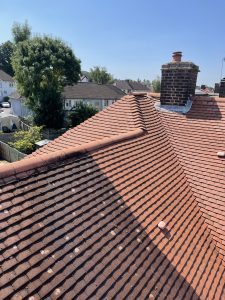 roof cleaning dsw cleaning