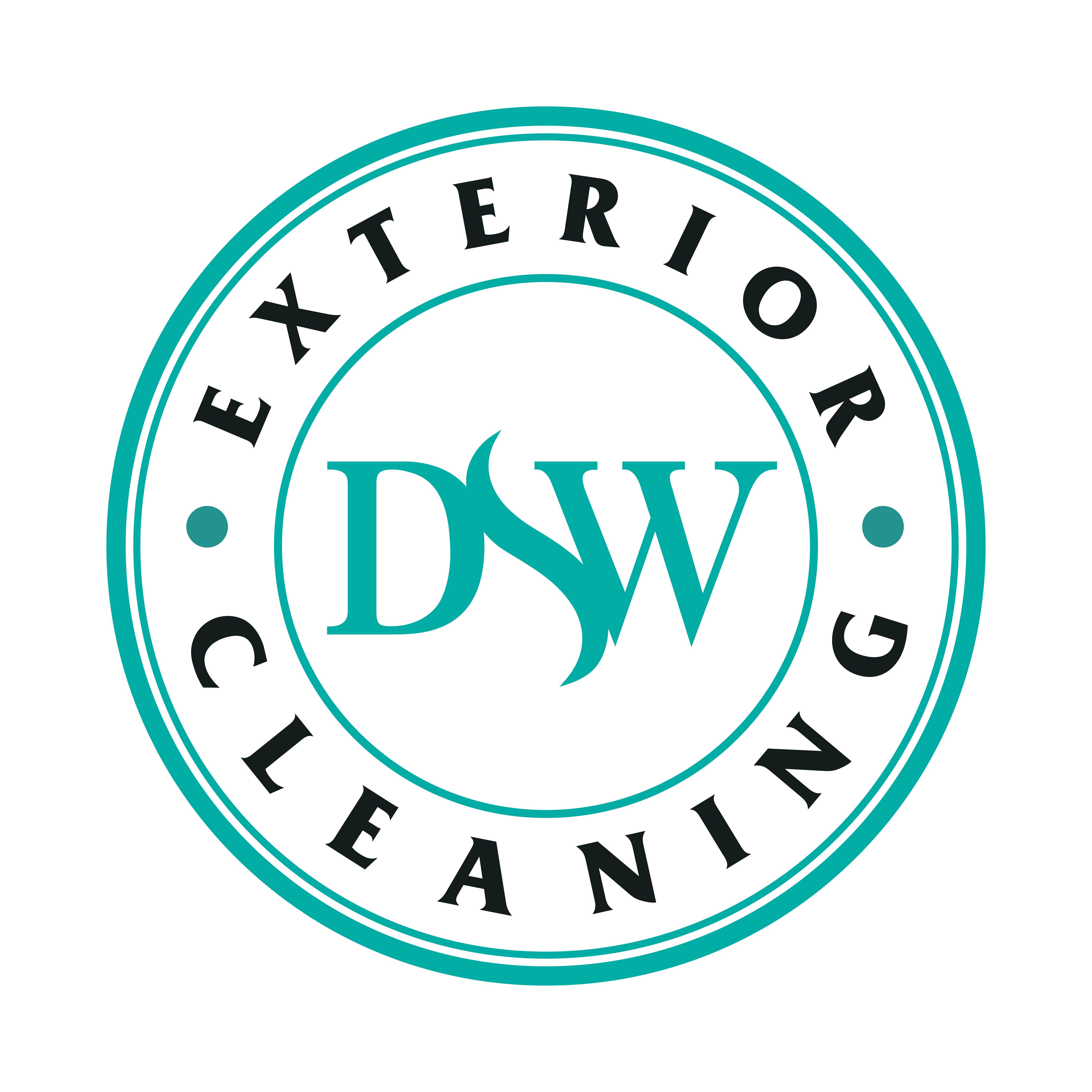 exterior cleaning near me dswcleaning.com