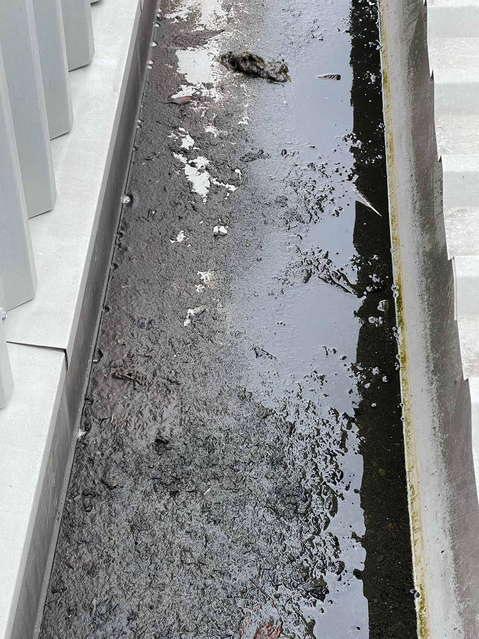 DSW Gutter Cleaning London